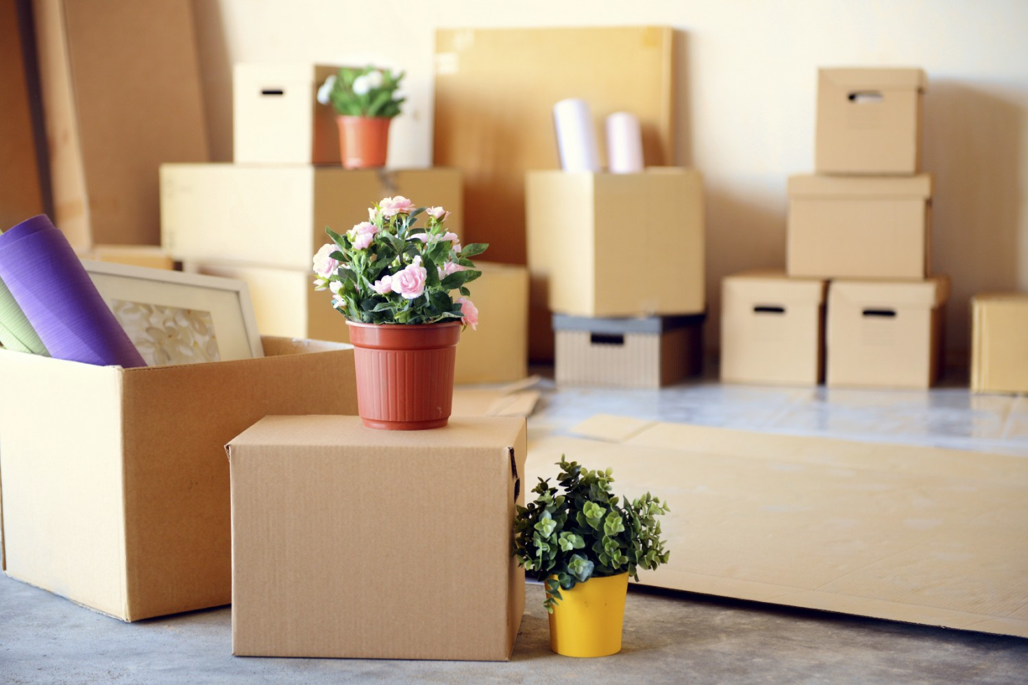 Moving house soon? Here are a few trusty tips to help you pack like a pro…